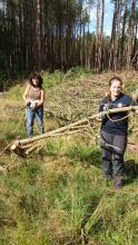 Fantastic volunteering opportunities with Land of Oak & Iron